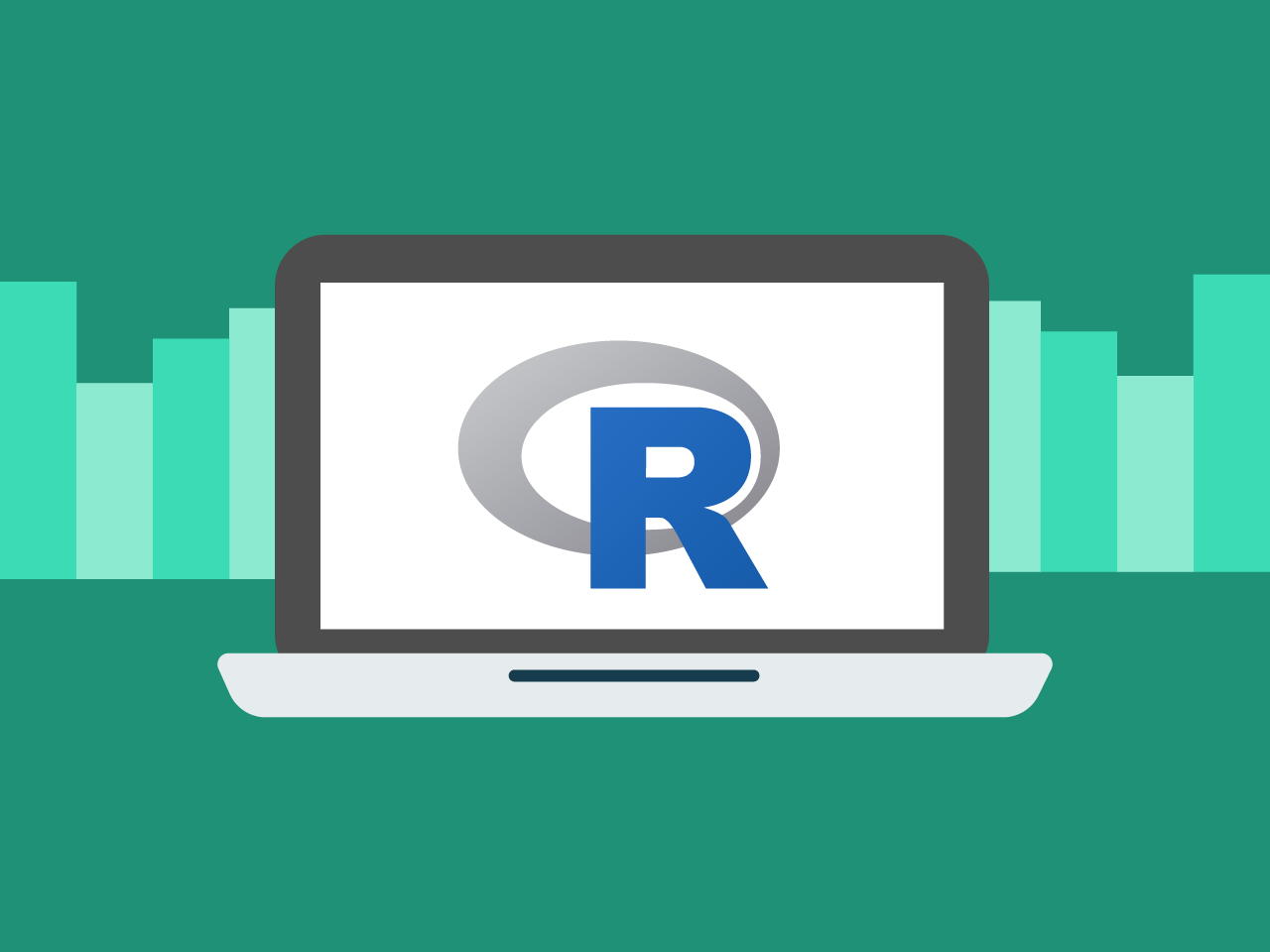 R for Data Science Image
